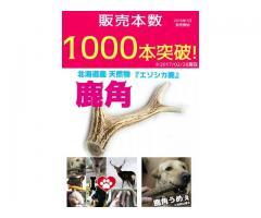 大型犬~中型犬の頑丈なおもちゃとして大人気!「エゾ鹿の角」販売開始13か月で累計販売本数1,000本を突破!