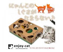 猫が夢中になるBOX知育玩具 enjoy-cat(エンジョイキャット)発売のお知らせ